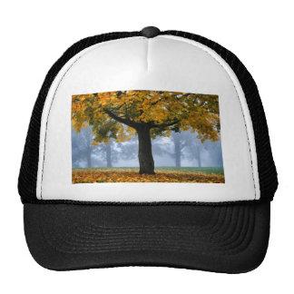 Tree #3 trucker hats