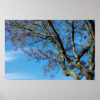 Tree against blue sky print