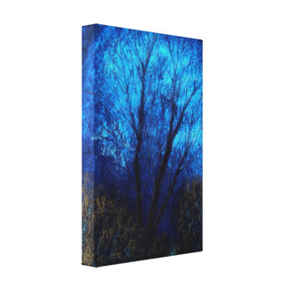 Tree and Blue Sky, Evening. Stretched Canvas Prints