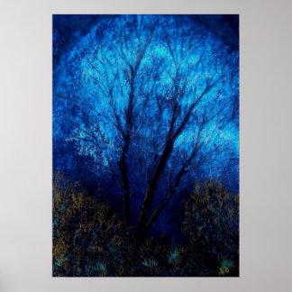 Tree and Blue Sky, Evening. Print