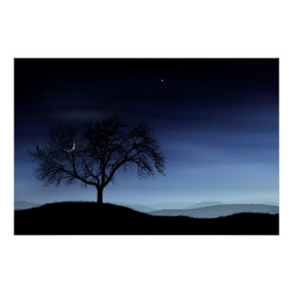 Tree and Moon Posters