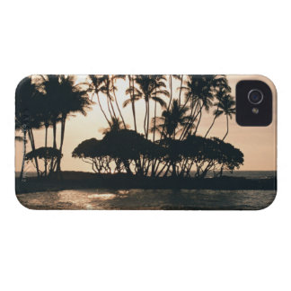 Tree and Sea iPhone 4 Cover