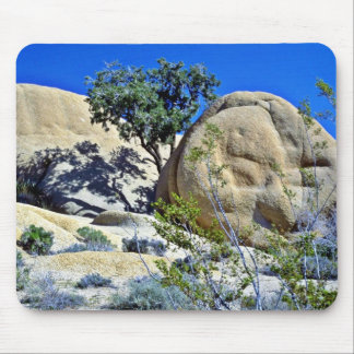 Tree And Shadows On Smooth Boulders Mouse Pad