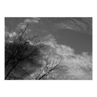 Tree and sky in black and white poster