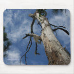 Tree and Sky Mouse Pad
