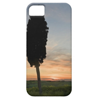 Tree at dusk near San Quirico d'Orcia, Tuscany Barely There iPhone 5 Case