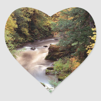 Tree Autumn Color Coquille River Heart Stickers
