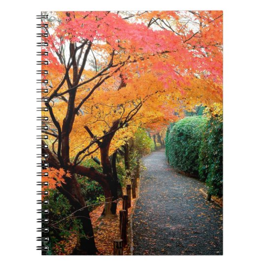 Tree Autumn Colours Japan Notebook
