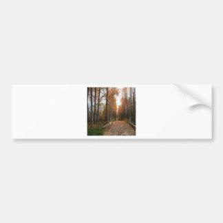 Tree Autumn Shade Bumper Stickers