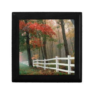 Tree Autumn Splendor Gift Box