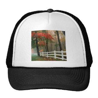Tree Autumn Splendor Mesh Hats