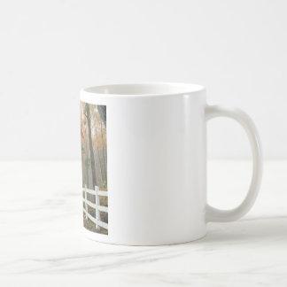 Tree Autumn Splendor Coffee Mug