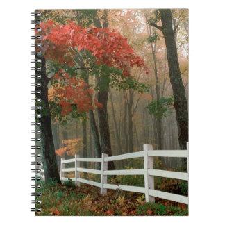 Tree Autumn Splendor Notebook