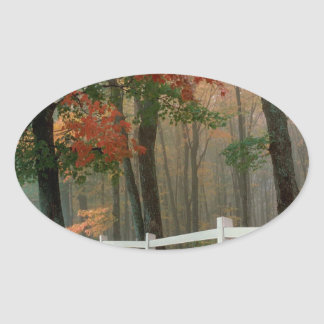 Tree Autumn Splendor Oval Sticker