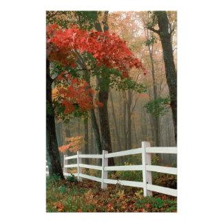 Tree Autumn Splendor Stationery Design