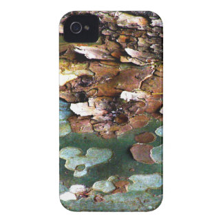 Tree Bark BlackBerry Bold Case-Mate Barely There