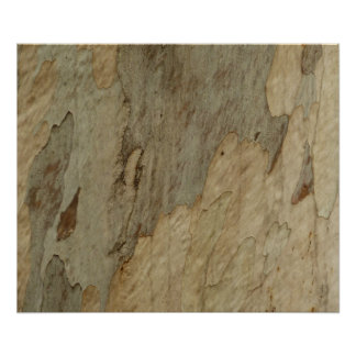 Tree Bark III Natural Abstract Textured Design Poster