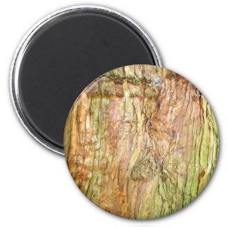 Tree Bark Magnet