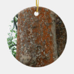 Tree Bark Round Ceramic Decoration