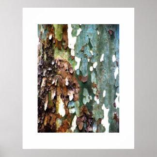Tree Bark Texture Print w/ Border starts at $11.20