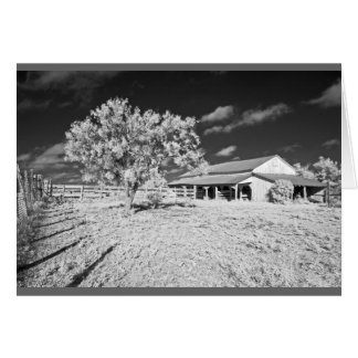 Tree, barn and fence card