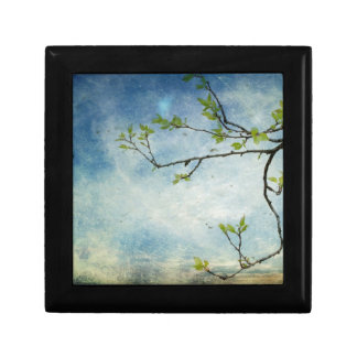 Tree Branch Over Textured Sky Gift Box