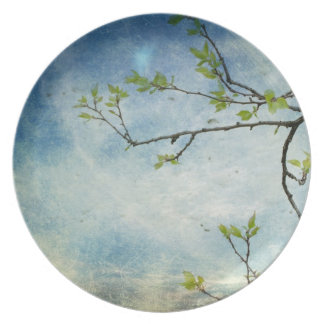 Tree Branch Over Textured Sky Plate