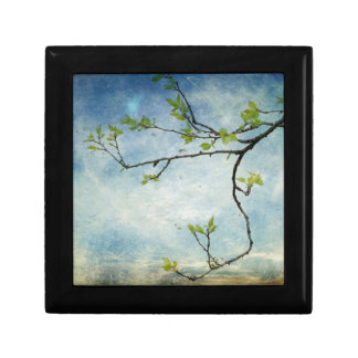 Tree Branch Over Textured Sky Small Square Gift Box