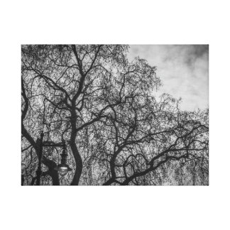 Tree branches in black and white canvas print