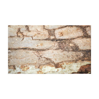 Tree Bricks Canvas Print