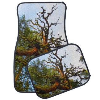 Tree Car Floor Mats