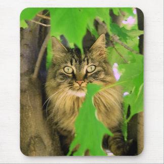 Tree Cat Mousepad