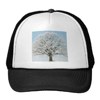 Tree Change Of Season Hat