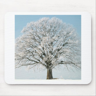 Tree Change Of Season Mouse Pads