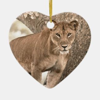 Tree-climbing lion, Uganda Africa Ceramic Heart Decoration