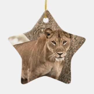 Tree-climbing lion, Uganda Africa Christmas Ornament