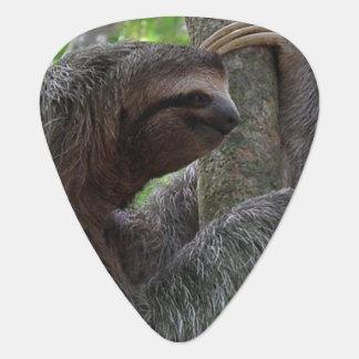 Tree Climbing Sloth Plectrum