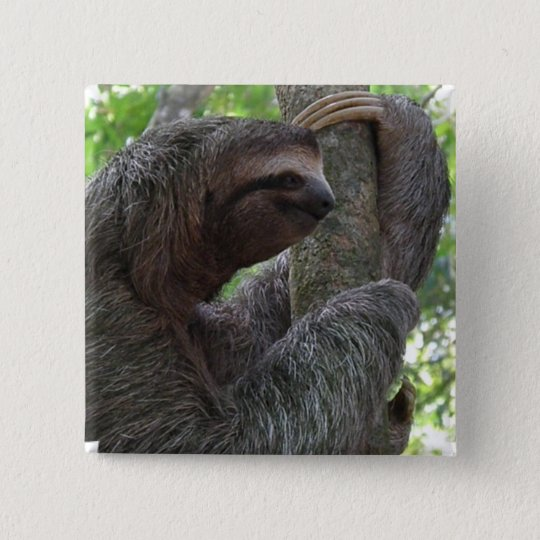 Tree Climbing Sloth Square Pin