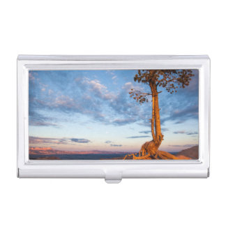 Tree Clings to Ledge, Bryce Canyon National Park Business Card Holder
