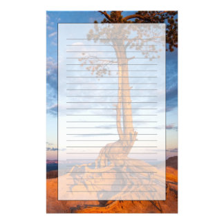 Tree Clings to Ledge, Bryce Canyon National Park Custom Stationery