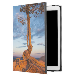 "Tree Clings to Ledge, Bryce Canyon National Park iPad Pro 12.9"" Case"
