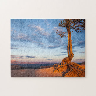 Tree Clings to Ledge, Bryce Canyon National Park Jigsaw Puzzle