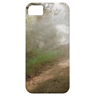 Tree Douglas Preserve Santa Barbara iPhone 5 Cases