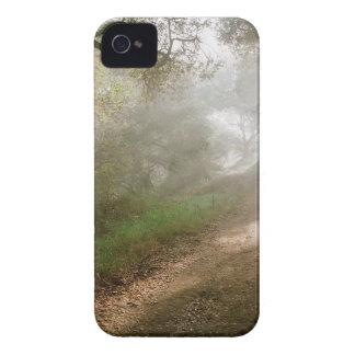 Tree Douglas Preserve Santa Barbara iPhone 4 Case