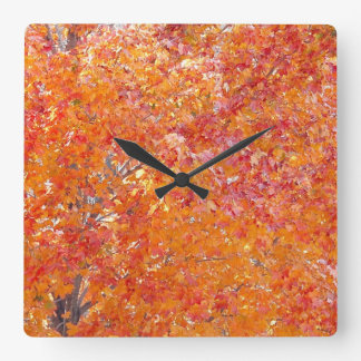 Tree Fall Colours Wall Clock