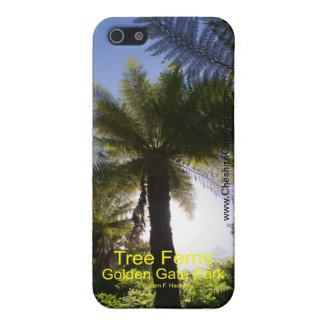 Tree Ferns Golden Gate Park California Products Case For iPhone 5/5S