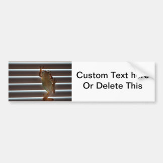 tree frog climbing blinds neat animal photo bumper sticker