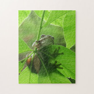 Tree Frog Clinging to Leaves Jigsaw Puzzle
