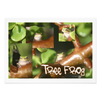 Tree Frog Collage, same frog different poses Personalized Invite