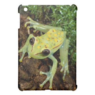 Tree Frog (Hylidae) Case For The iPad Mini
